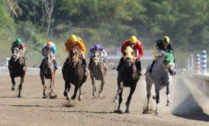 Buscan impedir la vuelta de carreras de caballos en Bahía Blanca