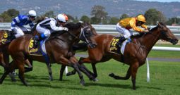 New Zealand betting levy, repealed