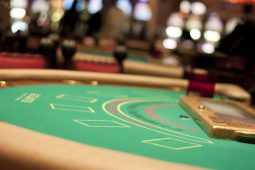 Delhi urges to regulate gambling