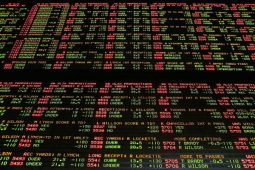 hammond sports betting