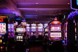 golden nugget casinos